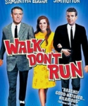 16_walk_dont_run